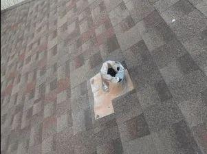 Roof Repair Columbus Ohio