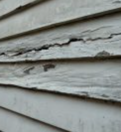 Rotting wood siding